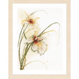 Lanarte Orchidee 50x60cm