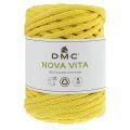 091 - DMC Nova Vita 4mm