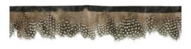 Band met fazant veren bruin wit gestippeld ± 7cm (prijs is per meter)