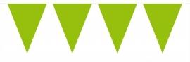 Vlaggenlijn mini lime groen