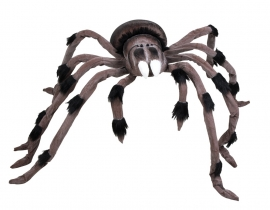 Huge scary spider 95 x 125 cm