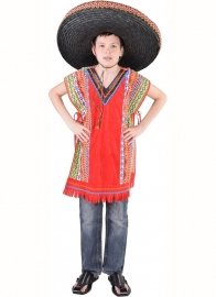 Poncho little inka