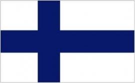 Scandinavische versieringen