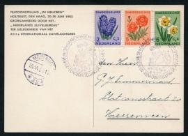 's GRAVENHAGE HOUTRUST. Tent. De Melkweg 20-30 juni 1953. Op bijbehorende kaart.