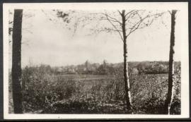 HELLENDOORN, Gezicht op het dorp vanaf de Hellendoornsche Berg. Gelopen kaart.