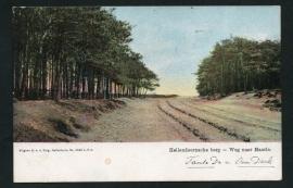 HELLENDOORN, Hellendoornsche berg - Weg naar Haarle. Gelopen kaart.