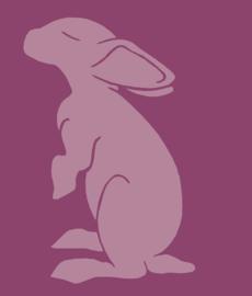 Stichting Konijnenopvang Lapina  (ontvangen)
