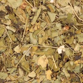 Magun - Moringa Bio 70 gr