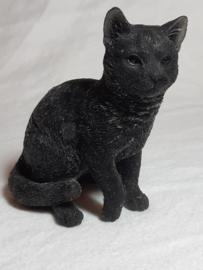 Kat gevuld met Onyx