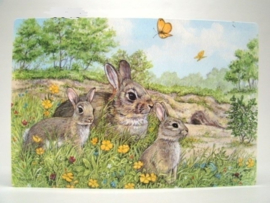 Placemat 3 konijnen