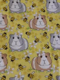 Cavia bijen