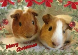 Enkele kerstkaart Tygo en Sarina