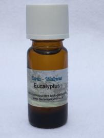 eucalyptus-biologisch-10ml-geschikt-voor-geursieraden