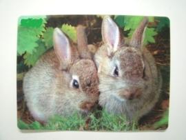 Place mat 2 konijnen 3D