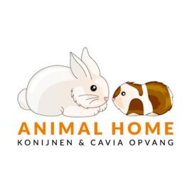Animal Home konijnen en cavia opvang (ontvangen)