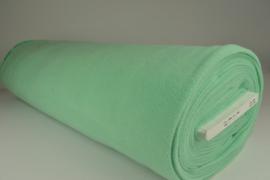 Mint groen 14