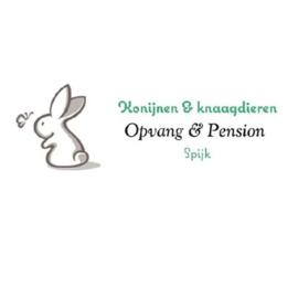 Konijnen Opvang & Pension Spijk (verzonden)
