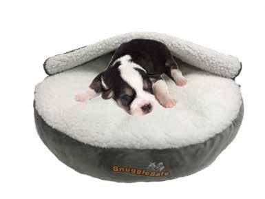 Snugglesafe Puppy Bed