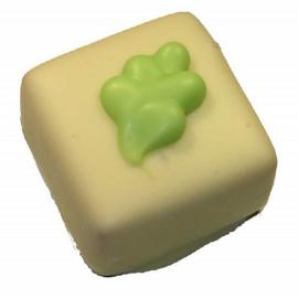 Witte bonbon bouches