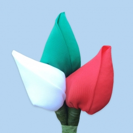 Tulp corsage wit-groen-rood
