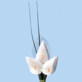 Tulp corsage met sizoflor blad en sprietjes - maatwerk