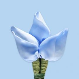Tulp corsage zacht blauw