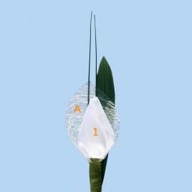 Tulp corsage enkel - maatwerk