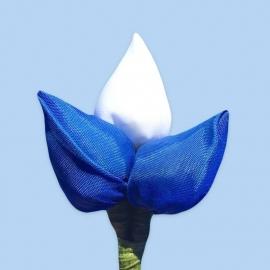 Tulp corsage blauw-wit-blauw