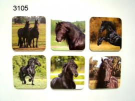 Friese paarden onderzetter set van 6