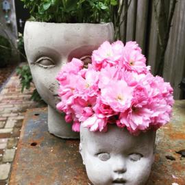 Studio Watts | planthead BabyDoll Vintage