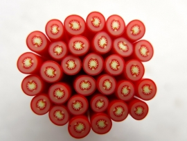 Polymer clay cane | TOMATO | 50mm