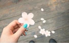 Sillis Stationery - Cherry Blossom sticky notes