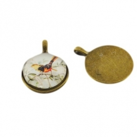 L78 Miss Doris | Bird Photo Pendant | 25mm