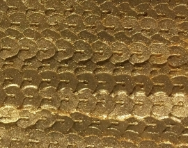 Sillicreations Mould | M0135 PAILLETTES