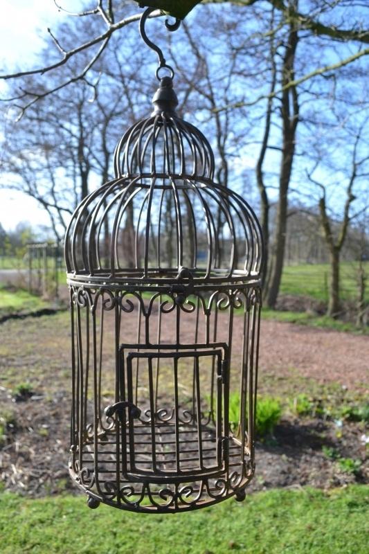 Decoratieve Vogelkooi Bruin Metaal Huissier Mooie Interieurdecoratie Tuinsier
