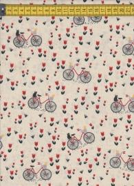 Basicgrey fiets+ kat
