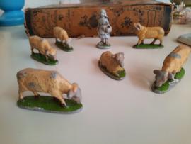 schapen met schaapsherder