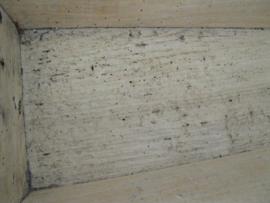 Grote licht houten bak