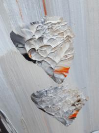 Imola / 50 nuances de gris - 220 x 180 x 4,5