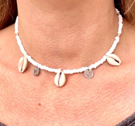 Coin shell necklace