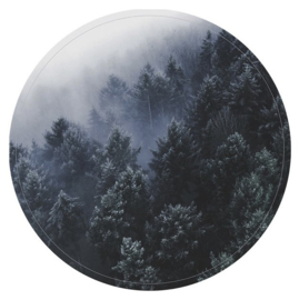 Blauw bos, 60 cm
