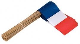 Vlaggetje op stok papier Frankrijk