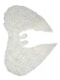 Engelenvleugels veren wit
