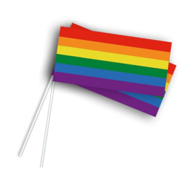 Vlaggetje op stok regenboog