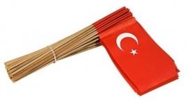 Vlaggetje op stok papier Turkije