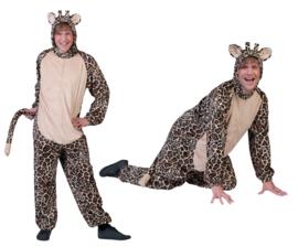 Giraffe heer mt. 48/50