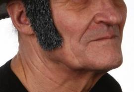 Bakkebaard Abraham grijs