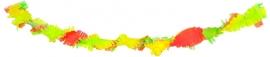 Draaiguirlande Neon Rainbow 6mtr