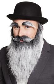 Baard oude man + wenkbrauwen en snor