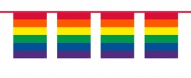 Vlaggenlijn Vierkant Regenboog/10mtr